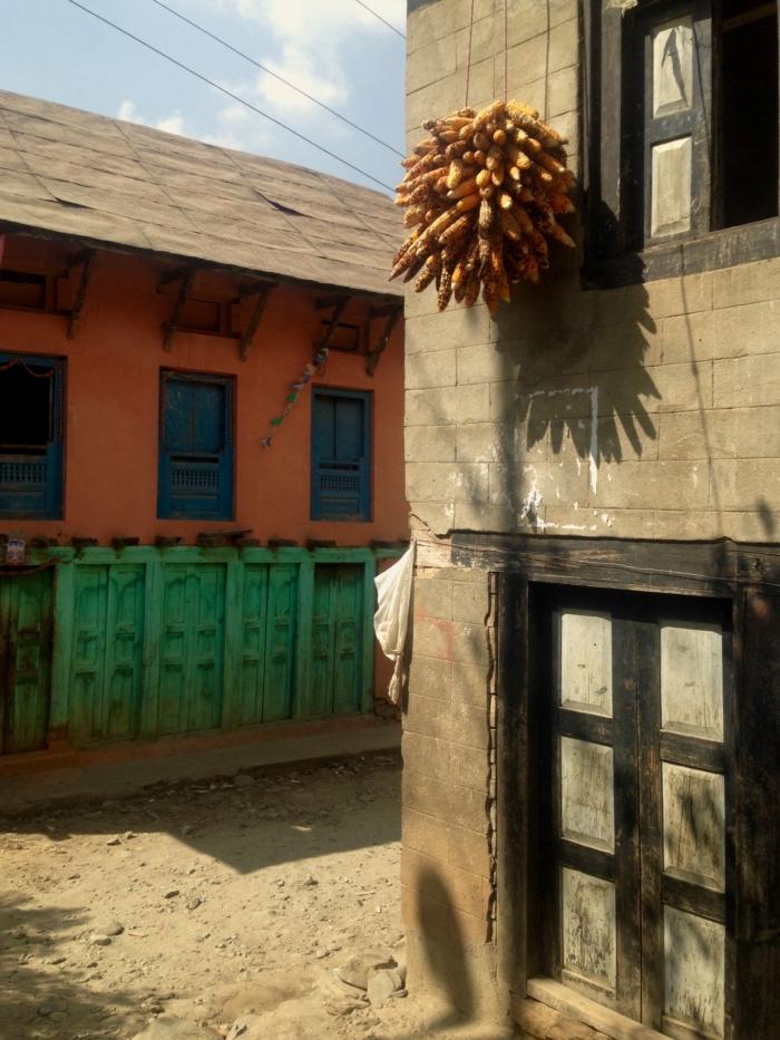 Palung - Népal