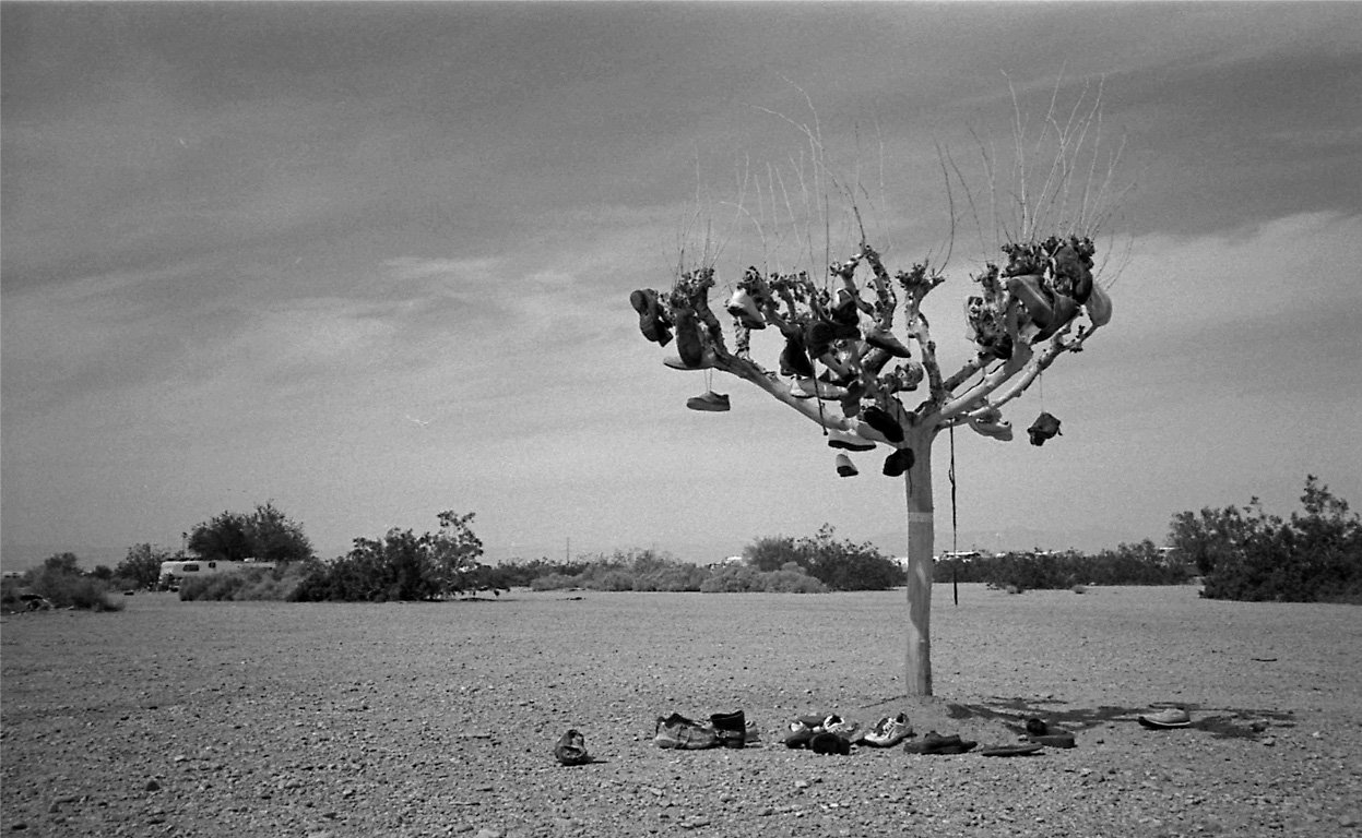shoes-tree